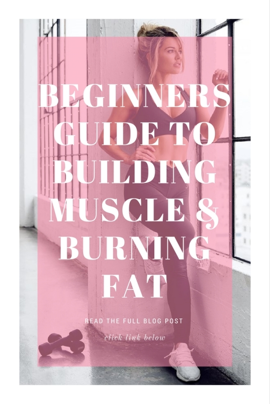 Beginners Guide to Building Muscle and Burning Fat
