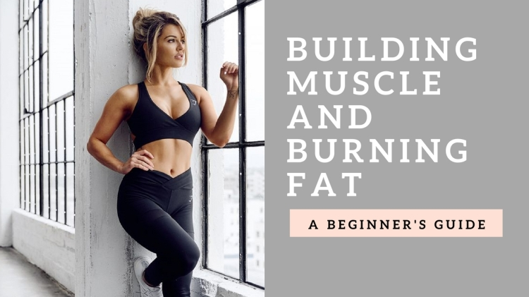 Build Muscle and Burn Fat Top Tips Women